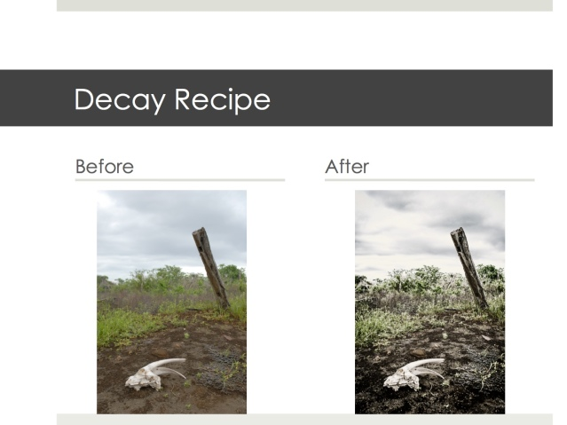 Before and after the decay recipe is applied